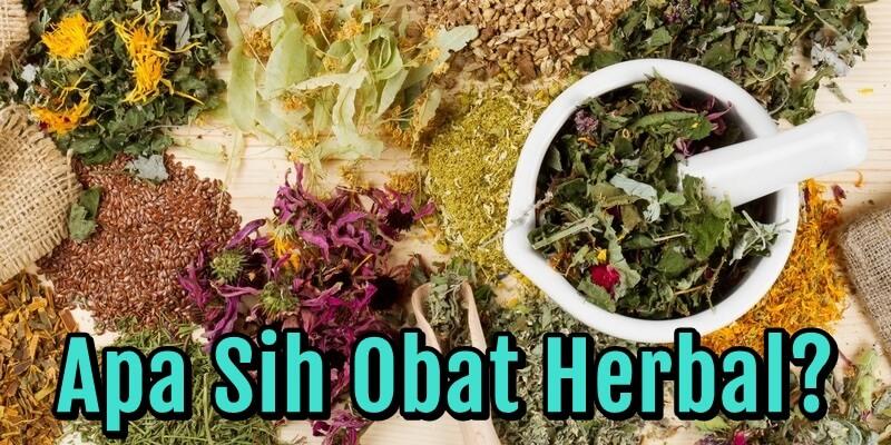 Apa Sih Obat Herbal